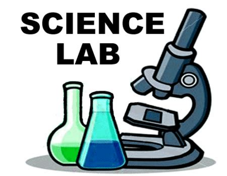 How to write a university lab report engineering